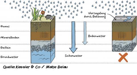 Wasserspeicher im Boden 2